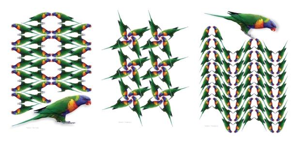4.parrot patterns