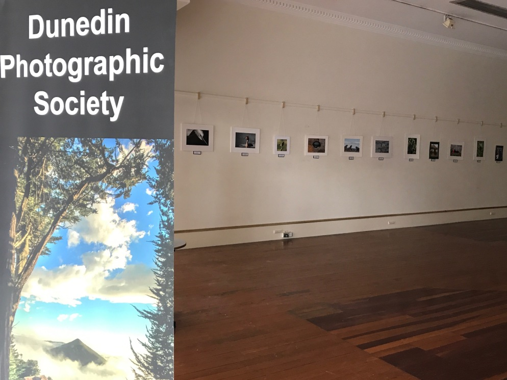 Spring print exhibition, Dunedin Community Gallery