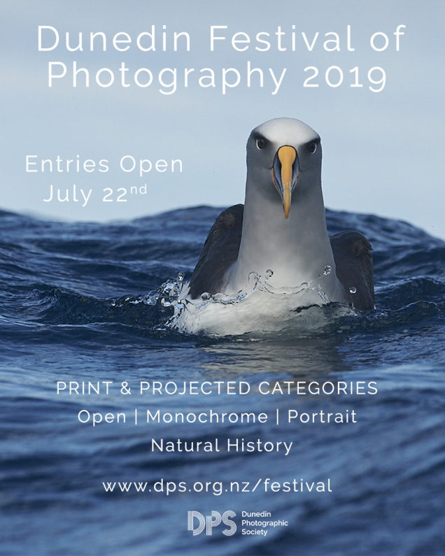 DPS Festival of Photography 2019